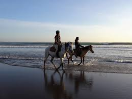 If you are tired of exploring Bali on foot or scooter, a horse riding experience is a beautiful way to explore villages, rice fields and beaches.