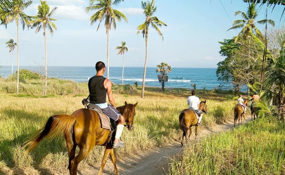 If you are tired of exploring Bali on foot or scooter, a horse riding experience is a beautiful way to explore villages, rice fields and beaches