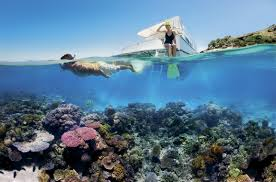 Not just for divers. Snorkeling beautiful coral reefs in Bali is for all adventure holiday lovers
